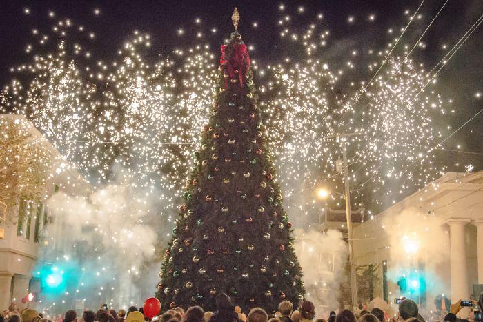 Natchez Lights Up Annual City Tree